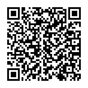 Scannen Sie den Code mit Ihrem Handy und Sie können unsere App mit verschiedenen Stimmungen auf Ihr Smartphone runterladen.
